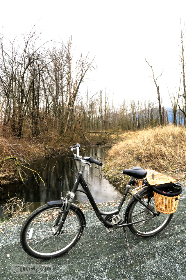 Specialized cruiser bike beside the river while beating the Feb blues with a winter bike ride | funkyjunkinteriors.net