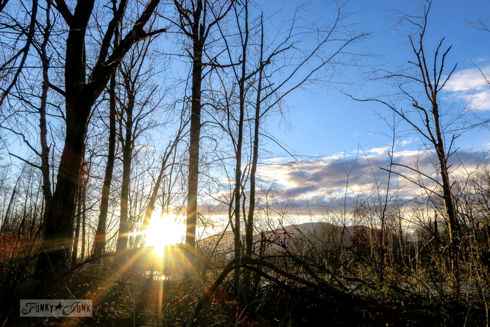 Sun setting during a winter nature bike ride through the woods | funkyjunkinteriors.net