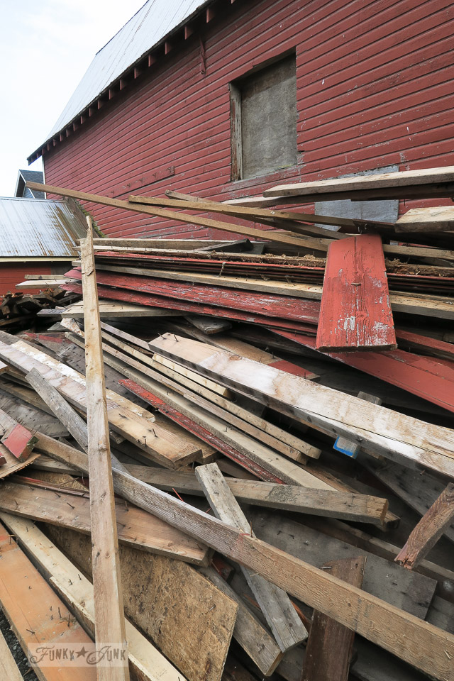 collecting red barn wood from my childhood farm
