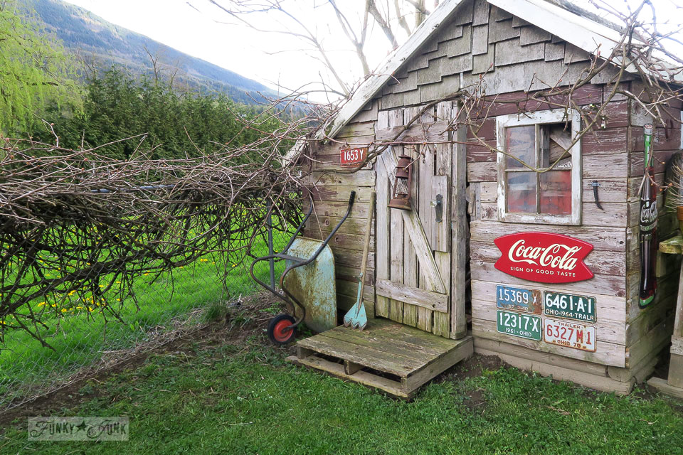 Pressure washing the rustic garden shed for spring | funkyjunkinteriors.net