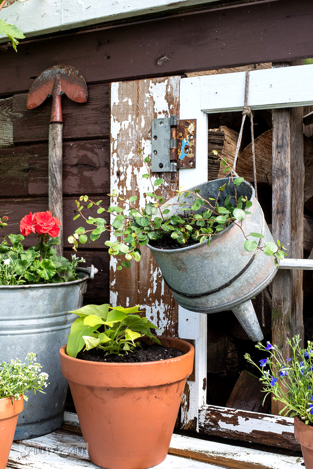 Old funnel for a planter for the backyard rustic potting shed | funkyjunkinteriors.net
