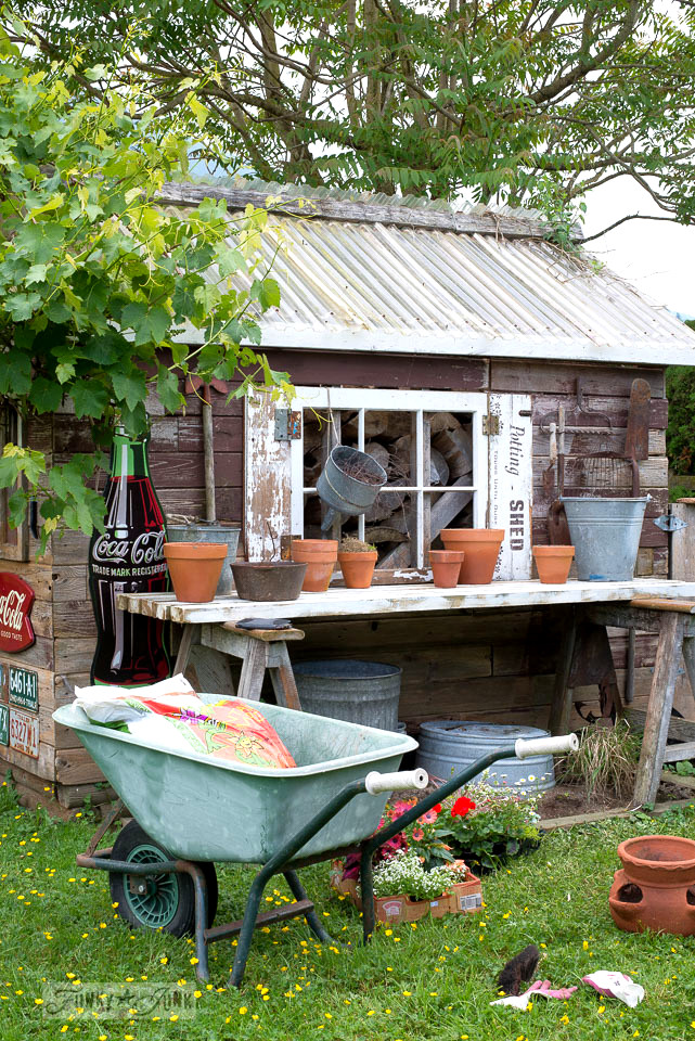 Potting flowers for a new summer look for the rustic backyard shed