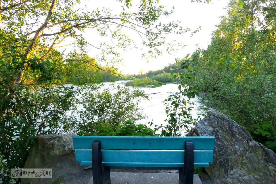 Aqua bench overlooking the river and wetlands during a nature bike ride | funkyjunkinteriors.net