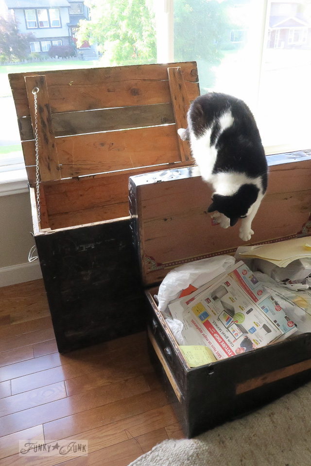Cleaning out old trunks during a deep purge, with a kitty helper.