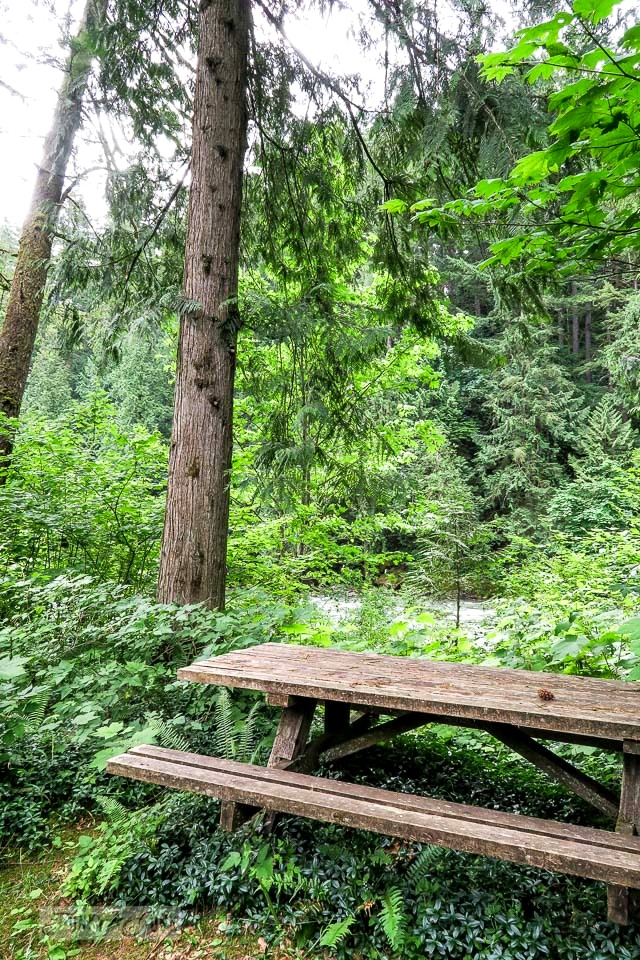 Picnic table in the forest at the riverfront getaway at Eco Retreat in Hope, BC Canada | funkyjunkinteriors.net