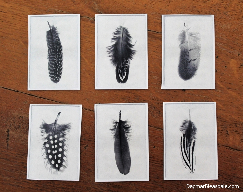 Feather postcard junk mail magnetics by Dagmar's Home, featured on Funky Junk Interiors