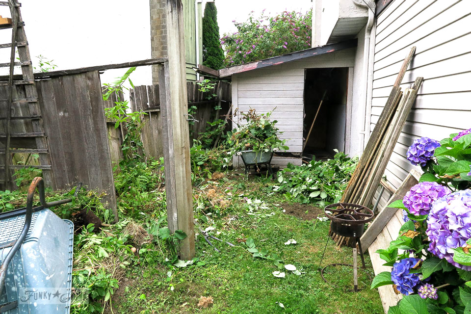 messy backyard fence and garden before