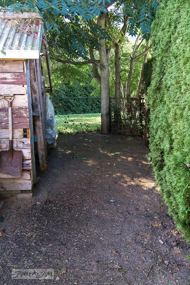 Compost area behind shed gets cleaned out and reseeded for lawn | funkyjunkinteriors.net