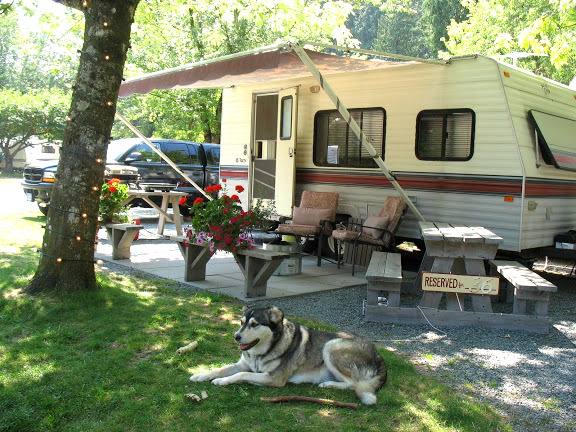 Tips for camping in a travel trailer! Sewer connectors, wheel chocks, how to back up a trailer, and more! Click to learn more! #camping #trailers #camp #vacation