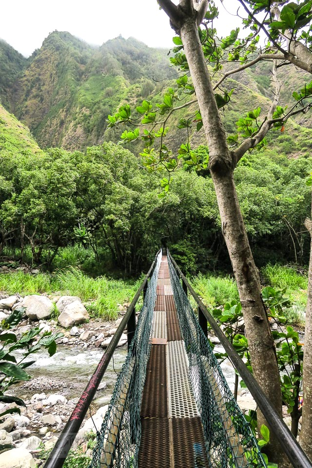 A forest trail walk at Maui's historic Kepaniwai Park along a long metal bridge leading to the other side of the river. Take the tour! funkyjunkinteriors.net