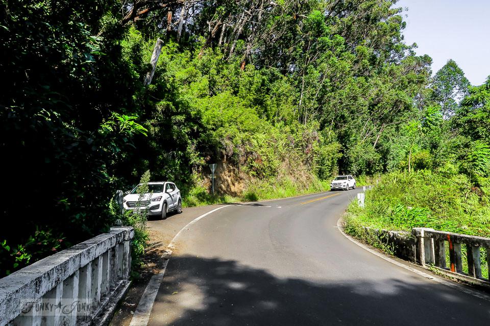 The turnoffs all along The Road To Hana, Maui, Hawaii | funkyjunkinteriors.net