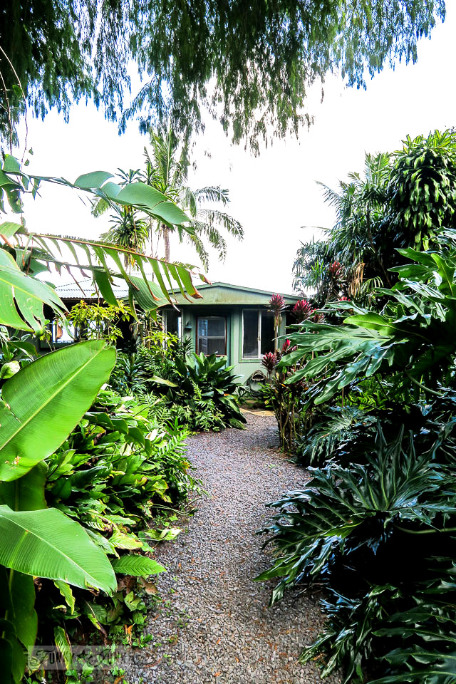 The charming and quaint Entabeni Cottage in Nahiku, buried in a tropical forest, along the Road to Hana adventure. Read the full story at funkyjunkinteriors.net