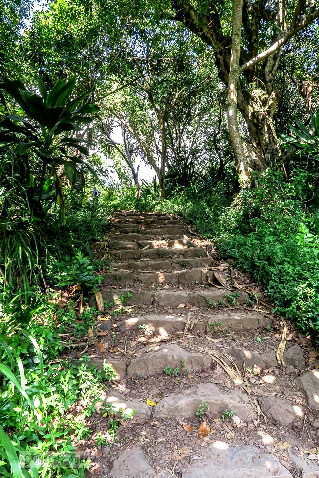 The rock stairways of the Pipiwai Trail leading through the bamboo forest during our Road to Hana trip in Maui, Hawaii - full story on funkyjunkinteriors.net