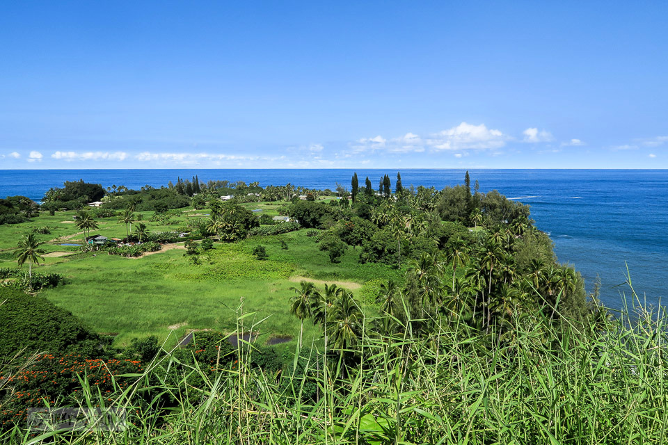 Beautiful valley along the ocean along the Road to Hana, Maui, Hawaii | funkyjunkinteriors.net