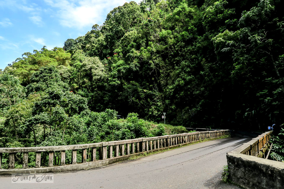 The scenic lookouts near the old bridges along The Road To Hana, Maui, Hawaii | funkyjunkinteriors.net