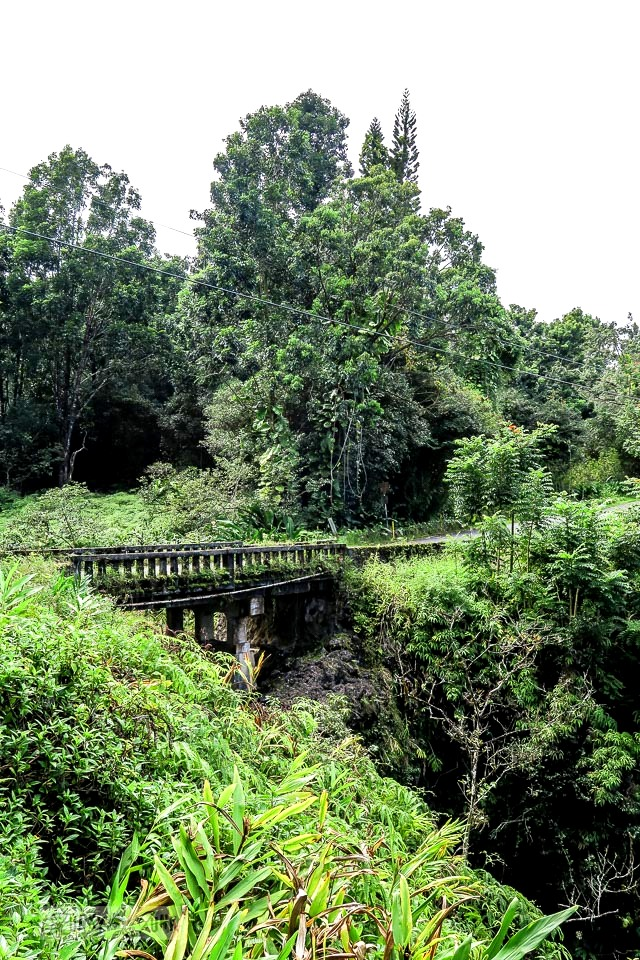 Old single lane bridges amid jungle growth along the Road to Hana, Maui, Hawaii | funkyjunkinteriors.net