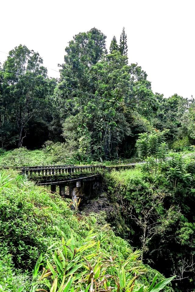 Old single lane bridges amid jungle growth along the Road to Hana, Maui, Hawaii | funkyjunkinteriors.net