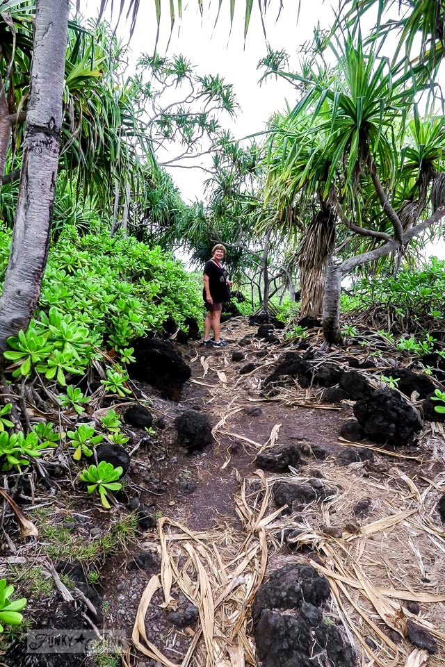 The unbelievably stunning Waianapanapa State Park walking trail, home of the black sand beach, along the Road to Hana, Maui, Hawaii | funkyjunkinteriors.net