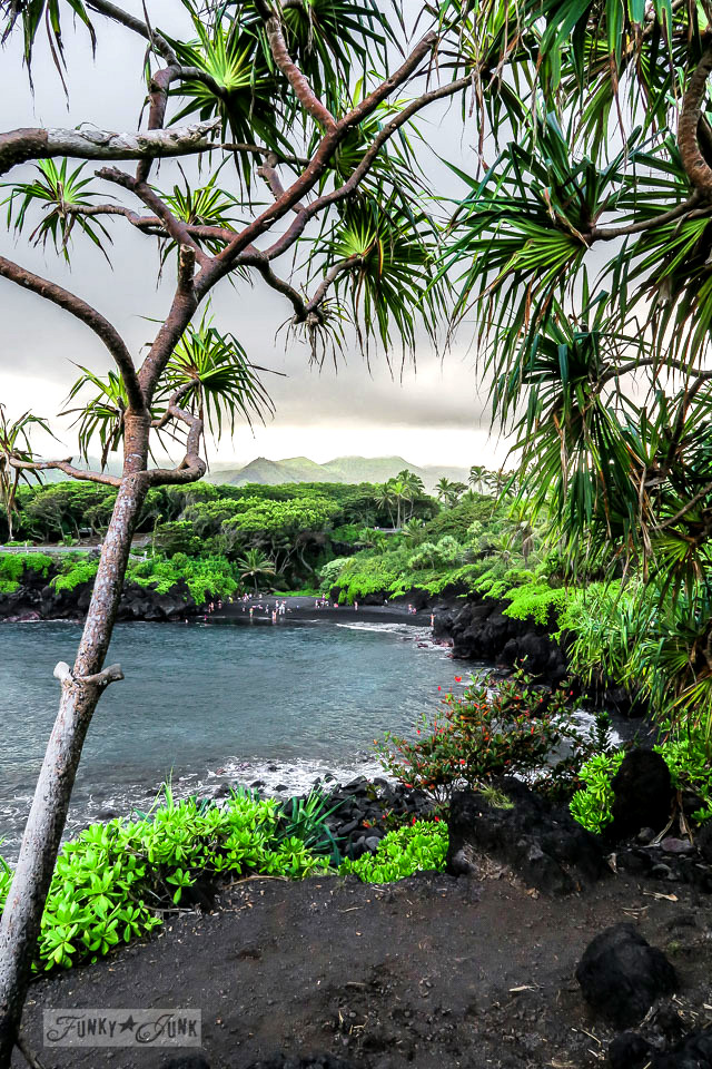 How to travel Hawaii - where to go, what to see, what to do, car rentals, airport shuttles, island hopping and more! Click for the complete guide! Shown: Black Sand Beach on Maui along Road To Hana