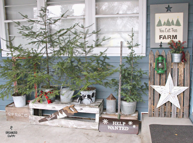 You Cut Tree Farm on a front Christmas porch by Organized Clutter, featured on Funky Junk Interiors
