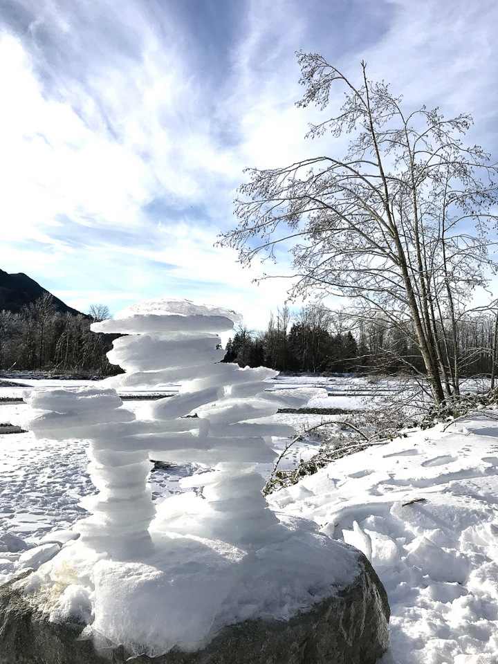 An ice sculpture along the Vedder River Rotary Trail in Chilliwack, BC Canada \ funkyjunkinteriors.net