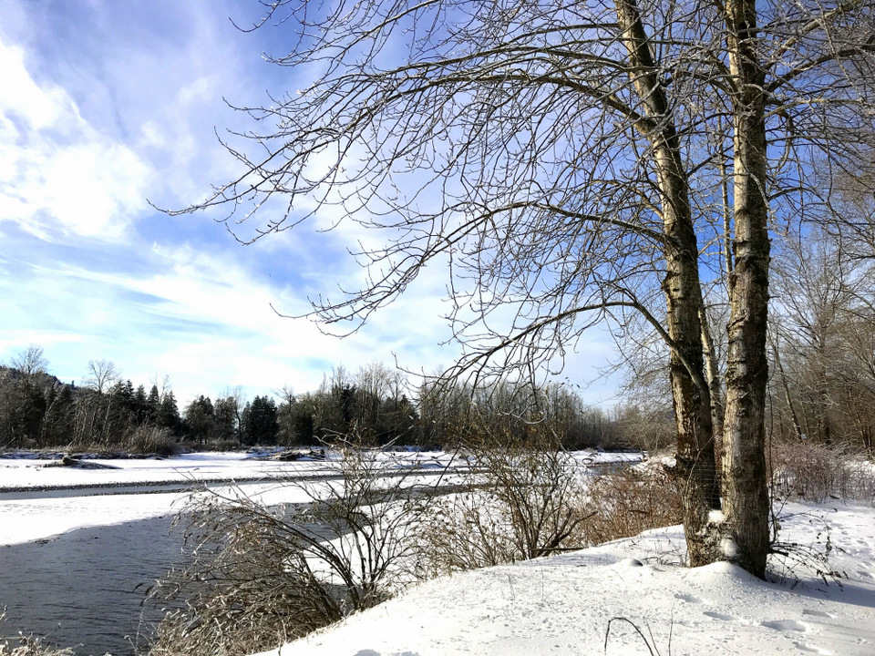 A snowy river view along the Vedder River Rotary Trail in Chilliwack, BC Canada \ funkyjunkinteriors.net