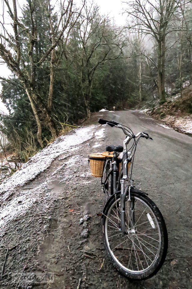 Forest trail in the snow on a Specialized dark grey cruiser bike with wicker panier baskets on top of Majuba Hill in BC Canada