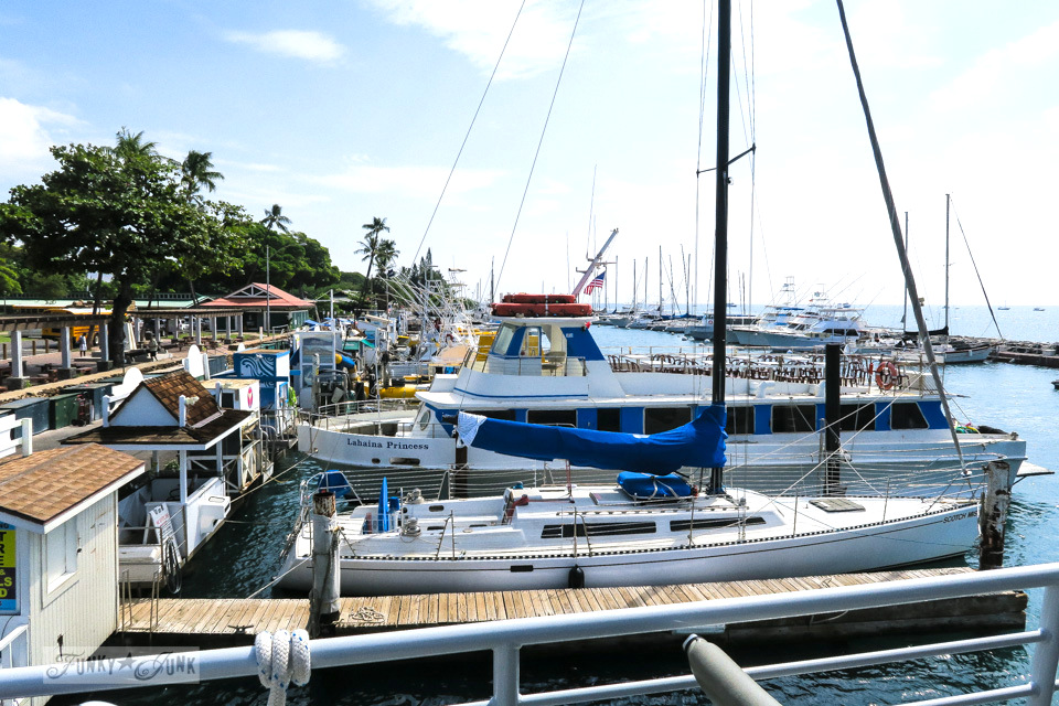 Lahaina boat harbour on the way to Lanai, Hawaii