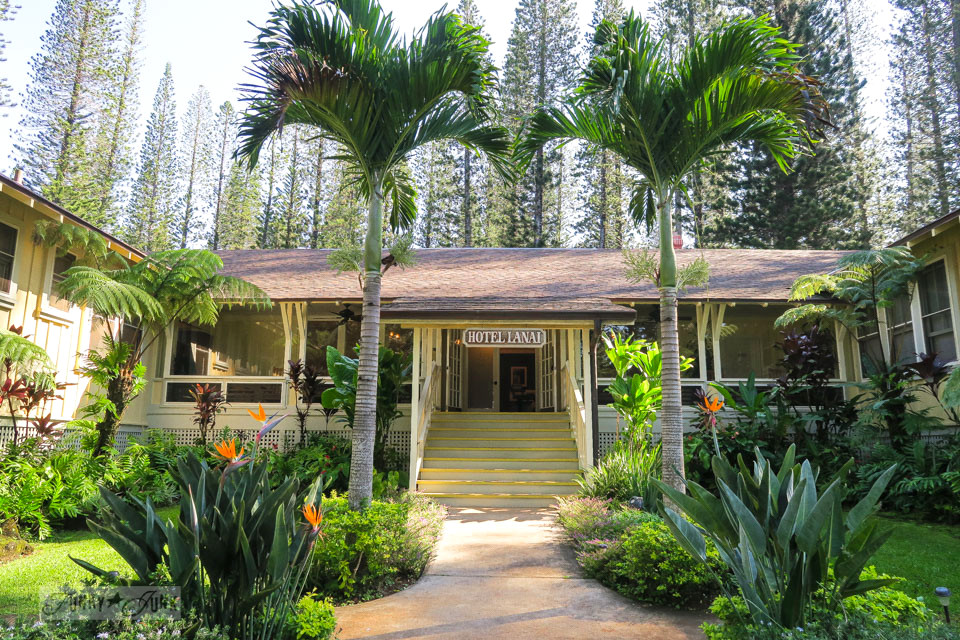 Hotel Lana'i, a gorgeous plantation styled hotel surrounded by tall pine trees in Lana'i Hawaii