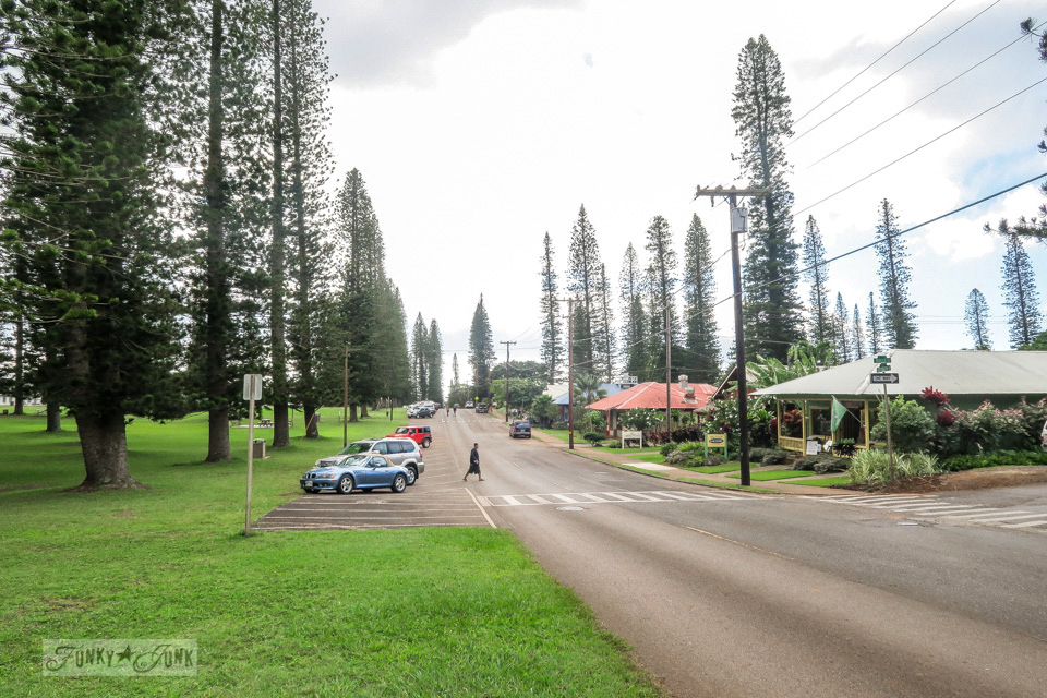 The street and park of Lanai city in Lanai, Hawaii