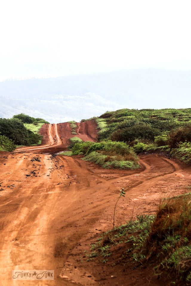 4x4 red soiled bumpy road conditions on the way to Garden of the Gods, a beautiful lunar landscape on the island of Lanai, Hawaii