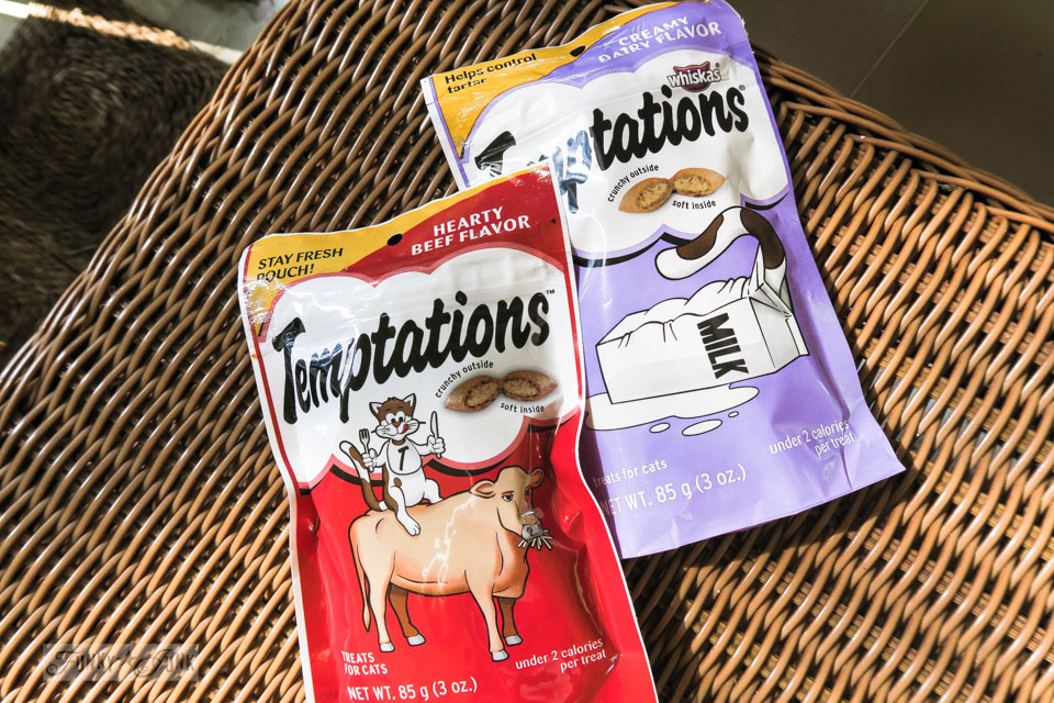 Bringing Temptations cat treats to the Lanai Cat Sanctuary in Hawaii