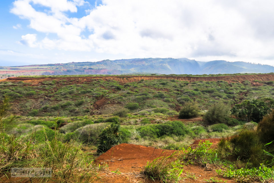 The rural beautiful rustic countryside along the island of Lanai, Hawaii