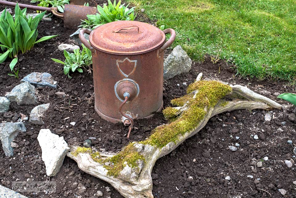 Mossy stump with a rusty junk garden can in a spring flowerbed