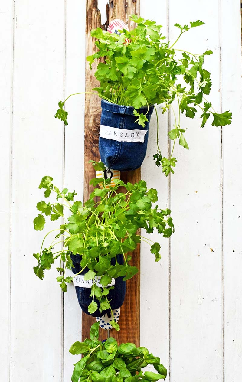 Repurposed jeans indoor hanging herb garden by Pillar Box Blue, featured on Funky Junk Interiors