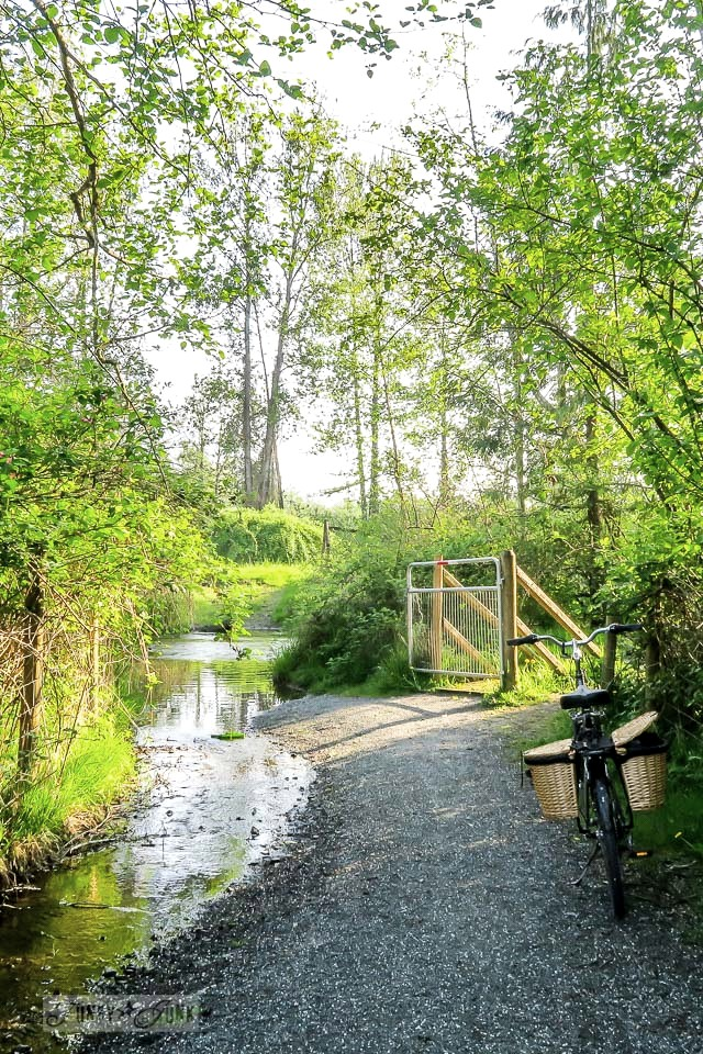 Biking past a hidden meadow that resembles a secret garden, along the Vedder River Rotary Trail in Chilliwack, BC