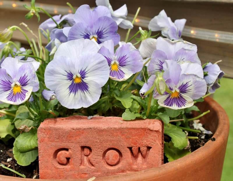 Stamped DIY brick garden markers by Adirondack Girl At Heart, featured on Funky Junk Interiors