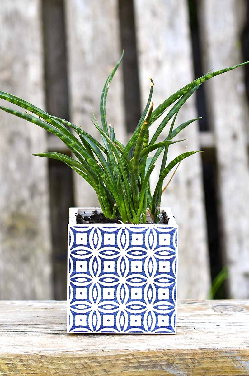 Square tile moroccan planters by Pillar Box Blue, featured on Funky Junk Interiors