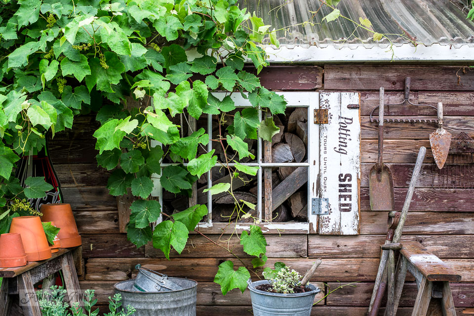 A simpler rustic garden shed for summer. A flowerbed full of green plants, and two sawhorses to hold up garden tools and clay pots with Potting Shed shutters made with Funky Junk's Old Sign Stencils
