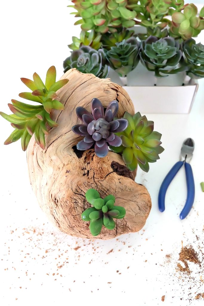 Faux succulent driftwood planter by Hello Creative Family, featured on Funky Junk Interiors