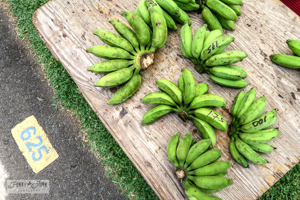 apple bananas at the Maui Swap Meet