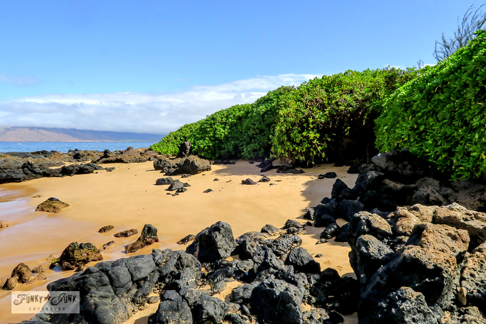 lava and plant lined Kamaole 3 beach in Kihei, Maui