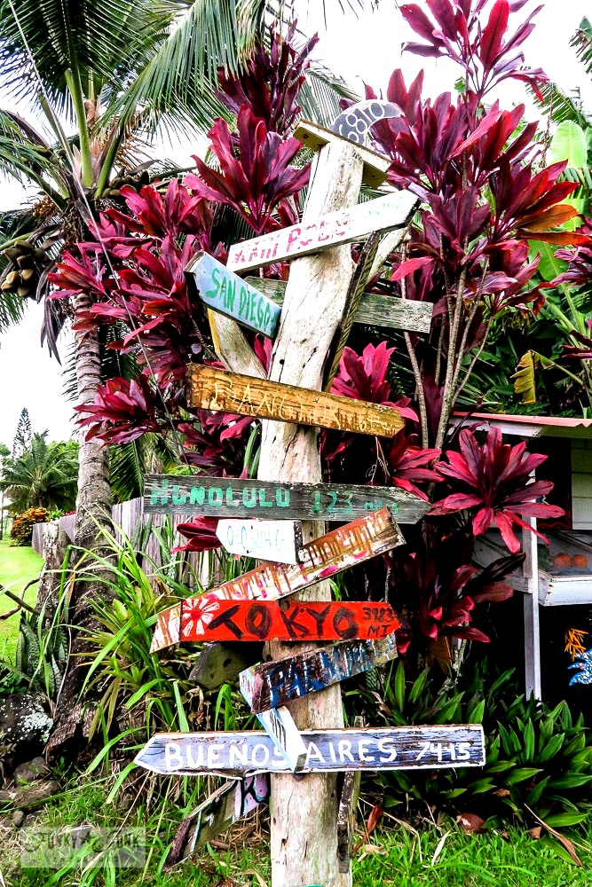 How to travel Hawaii - where to go, what to see, what to do, car rentals, airport shuttles, island hopping and more! Click for the complete guide!