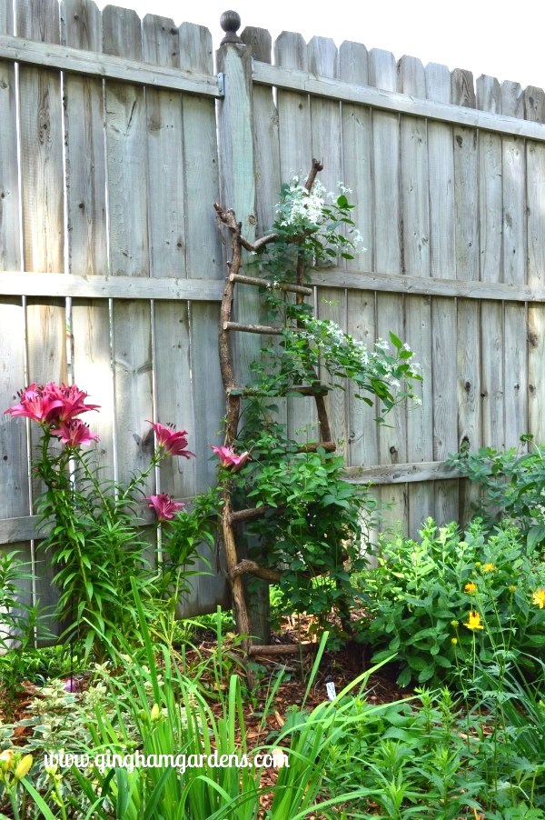 branch ladder garden trellis by Gingham Gardens, featured on Funky Junk Interiors