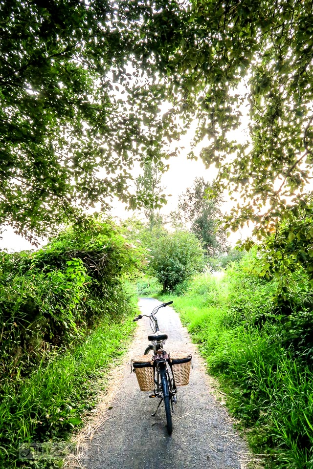 Riding my bike for exercise that doesn't hurt is key! - Part of - Advice for menopausal women and a health update. - includes advice from my doctor and what is working!