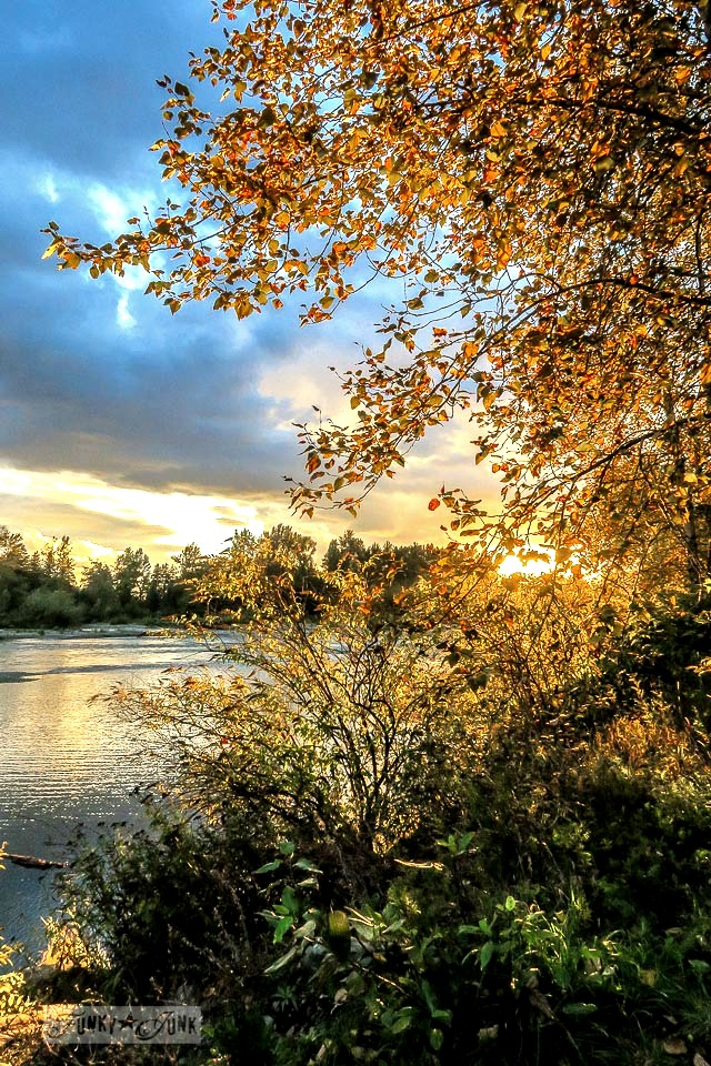 When golden hour emulates new life changes during a fall bike ride along the vedder river rotary trail chilliwack bc canada