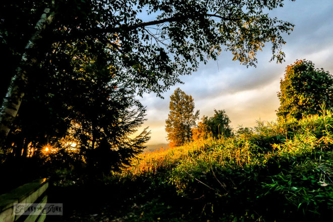 When golden hour dreams hit during a fall bike ride along the vedder river rotary trail chilliwack bc canada