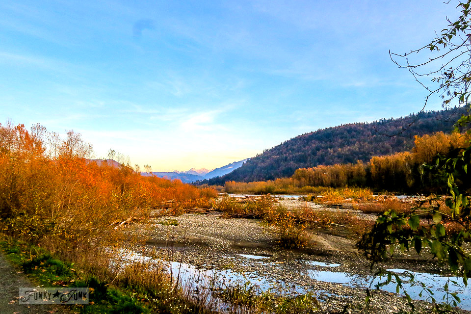 Fall bike riding along the Vedder River Rotary Trail in Chilliwack, BC Canada