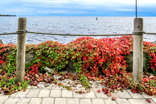 A rustic rope fence and colourful fall foliage at Ontario Place during a fall trip to Toronto, Ontario, Canada
