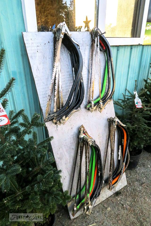 The Christmas tree saws at Pine Meadows Christmas tree farm